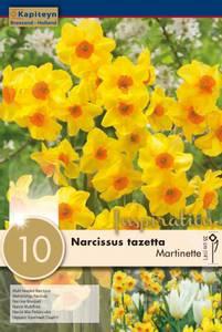 Bilde av Påskelilje 'Martinette' - 10 stk