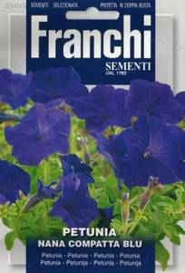 Bilde av Petunia 'Compact Blue' - Petunia grandiflora