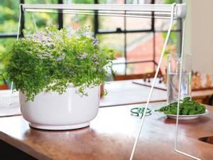 Bilde av Stativ til Florabooster LED lys