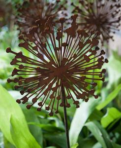 Bilde av Allium på stang 135 cm