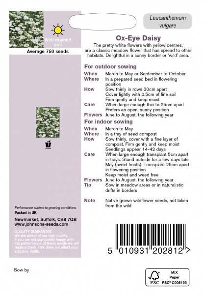 Prestekrage - Leucanthemum vulgare