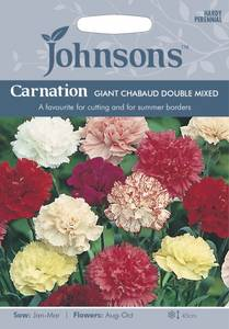 Bilde av Nellik, Hage- 'Giant Chabaud Double Mixed' - Dianthus