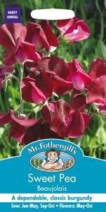 Bilde av Blomsterert 'Beaujolais' - Lathyrus odoratus
