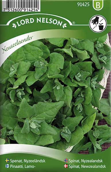 Spinat, Nyzealandsk - Tetragonia tetragonioides