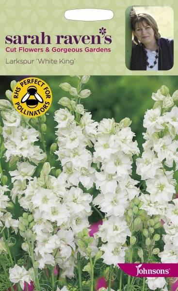 Hyasintridderspore 'White King' - Consolida ajacis