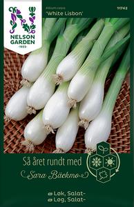 Bilde av Salatløk 'White Lisbon' - Allium cepa