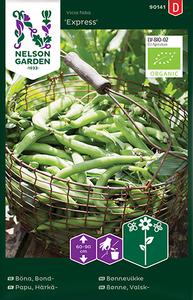 Bilde av Bønne 'Express' - Bondebønne - Organic