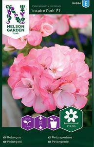 Bilde av Pelargonium 'Inspire Pink' F1