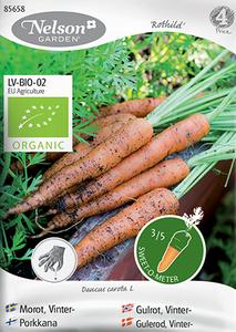 Bilde av Gulrot 'Rothild 2' - Daucus carota, Organic