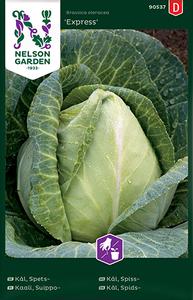 Bilde av Spisskål 'Express' - Brassica oleracea